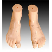 Massagerfeet model 17cm  (pair)